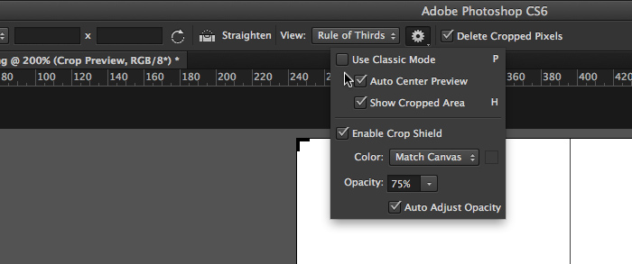 Photoshop CS6 cropping preferences