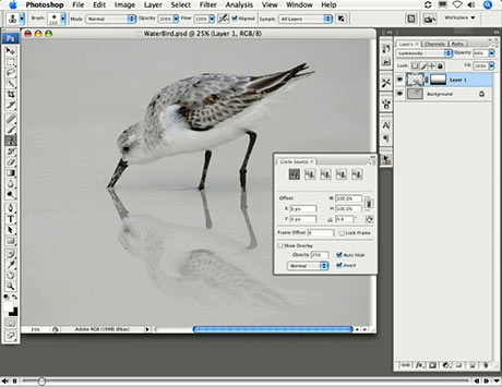How to create a life-like mirror image in Photoshop - The Graphic Mac